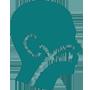 icono especialidad otorrinolaringologia