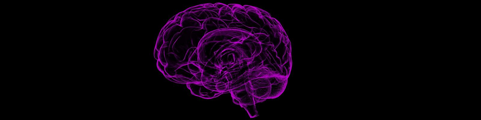 Especialidad - Neurología