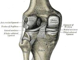 Meniscectomía Artroscópica